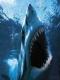 Sharkatoor