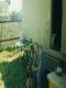 trampnettulakfb1962