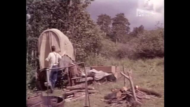 Dostavník (1966)