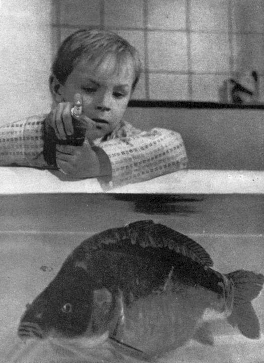 Povídky o dětech (1964)