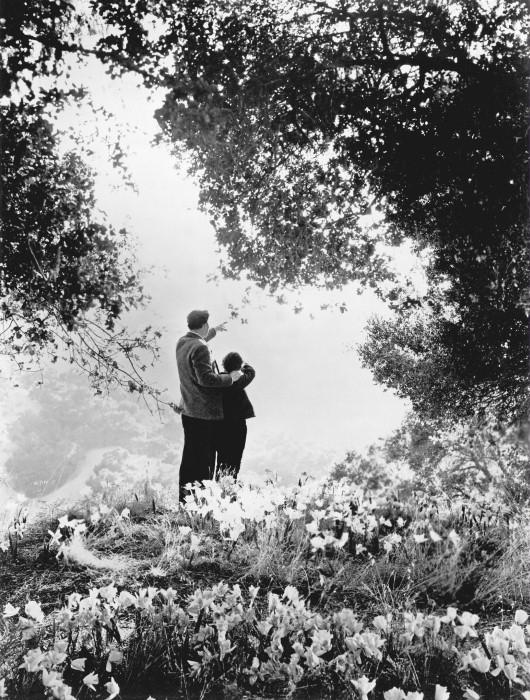 Bylo jednou jedno zelené údolí (1941)