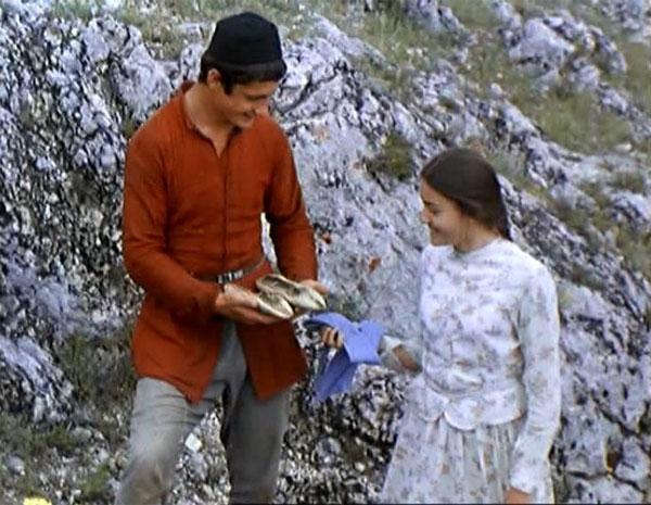 Strom přání (1976)