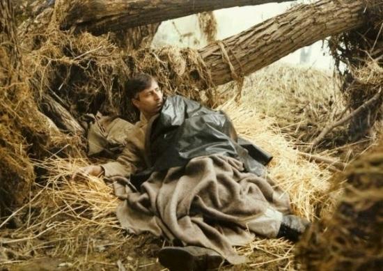 Smrt krásných srnců (1986)