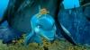 Delfín, příběh snílka (2009)