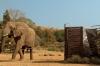 Africké dobrodružství (2013)