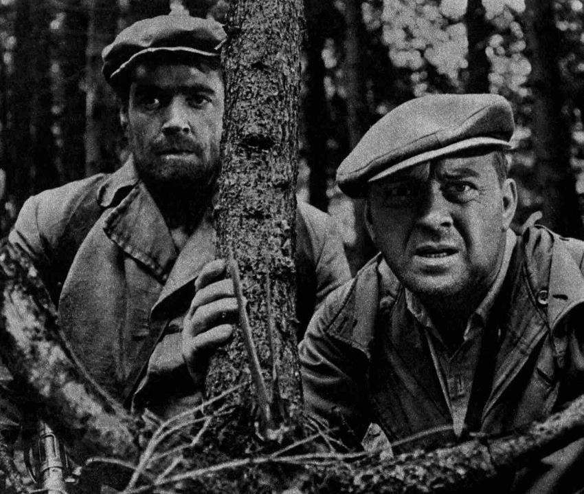 Kohout plaší smrt (1961)