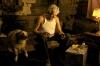 Večerní slunce (2009)
