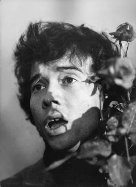 Dvere dokorán (1977)