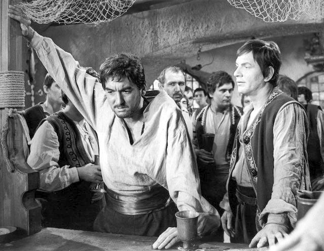 Majster kat (1966)
