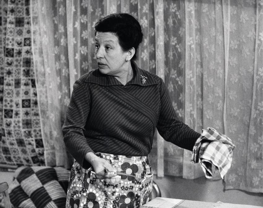 Žena za pultem (1977) [TV seriál]