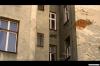 Graffitiger (2010) [DVD kinodistribuce]