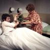 Rovnice o jedné krásné neznámé (1979) [TV hra]