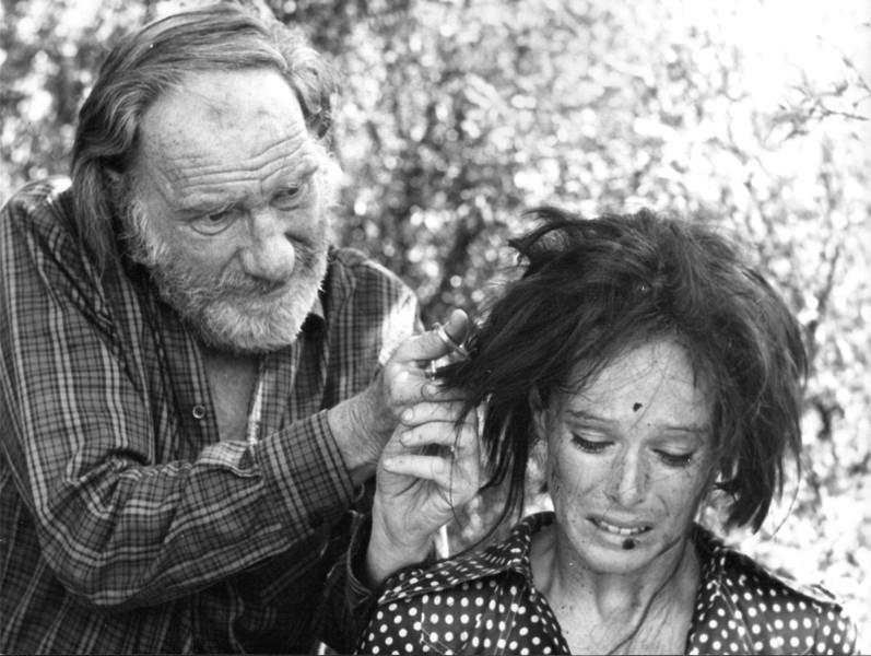 Fernando Fernán Gómez,  Geraldine Chaplin