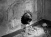 Vraždící bestie (1959)