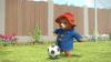 Dobrodružství medvídka Paddingtona (2019) [TV seriál]