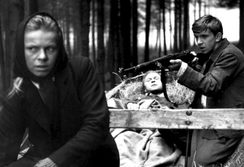 Kočár do Vídně (1966)