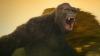 Kong: Ostrov lebek (2017)