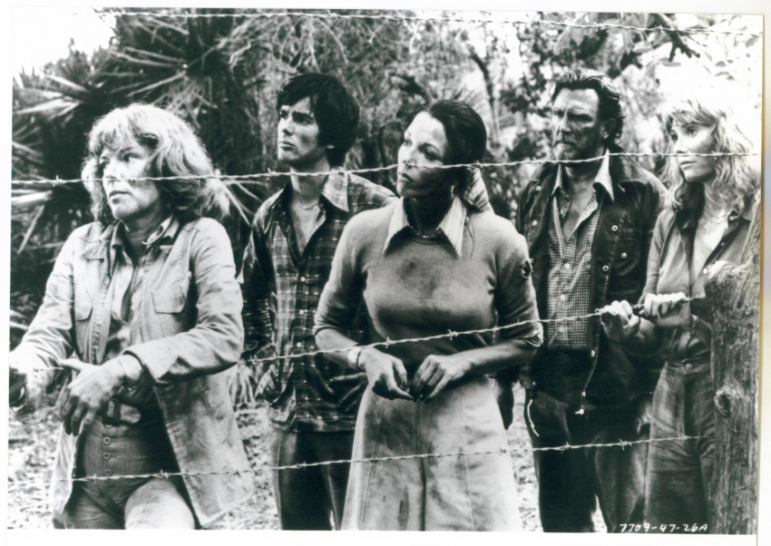 Mravenčí teror (1977)