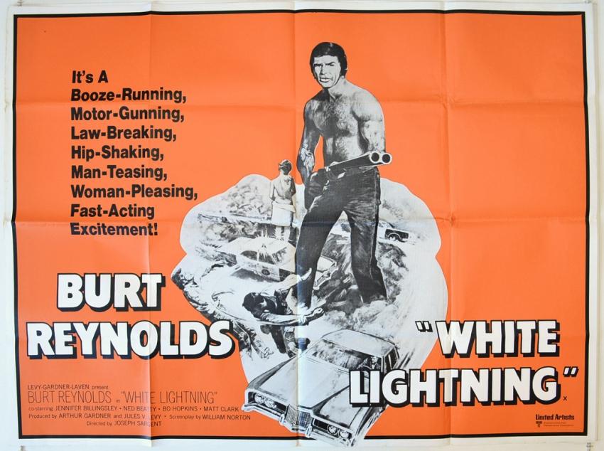 Na straně zákona (1973)