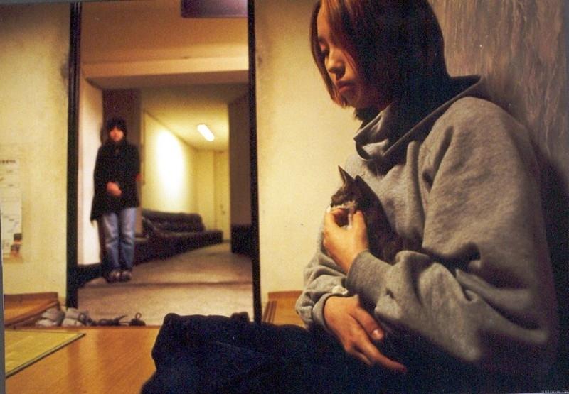 Postarej se o kočku (2001)