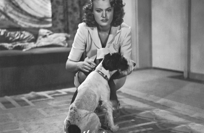 Psí dny (1944)