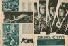 Eskadra Netopýr (1958)