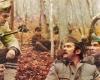 V horách roste zelená borovice (1971)