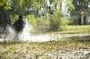 V elektrizující mlze (2008)