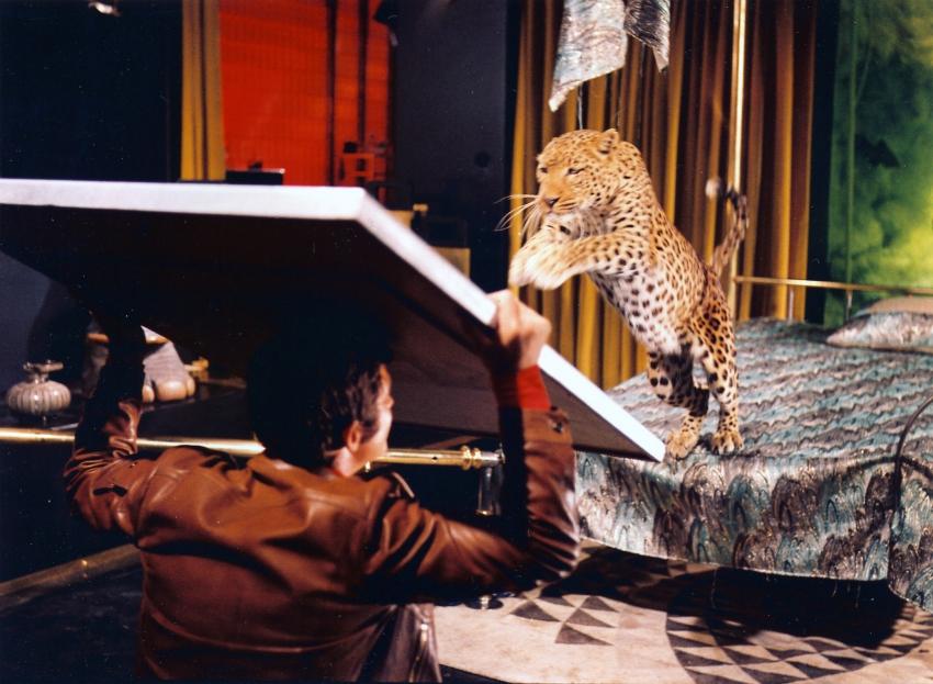 Velký šéf (1969)