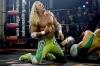 Wrestler (2008)