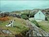 Země sv. Patricka (1967)