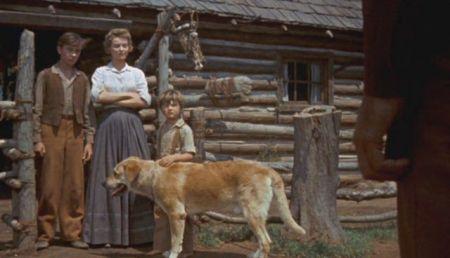 Zrzoun (1957)