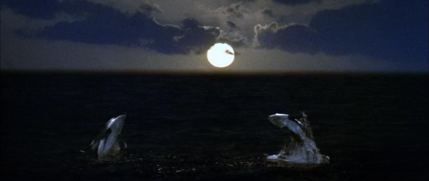 Orka zabiják (1977)