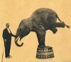 Cirkus Kludský (1967)