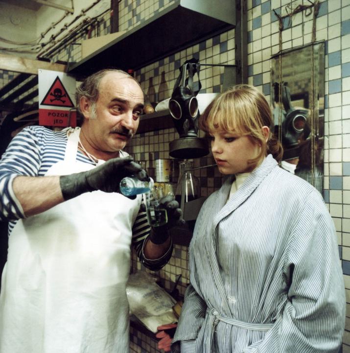 Pozor, vizita! (1981)