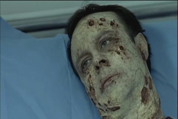 Ptačí chřipka (2008) [TV film]