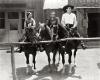 The Fourth Horseman (1932)