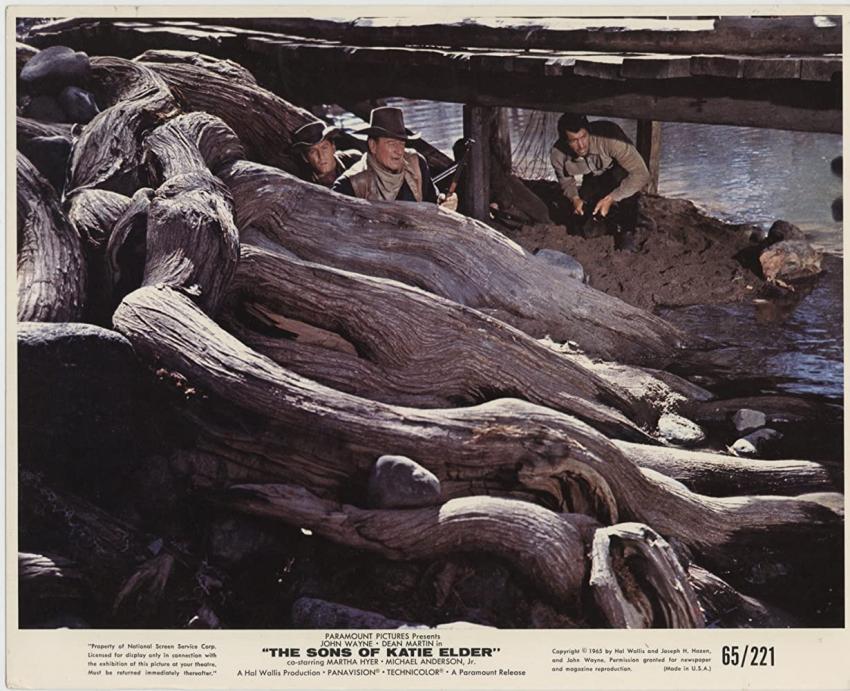 Synové Katie Elderové (1965)