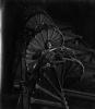 Pod rouškou noci (1956)