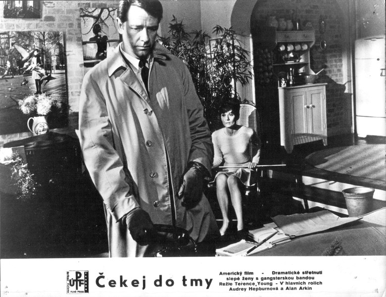 Čekej do tmy (1967)
