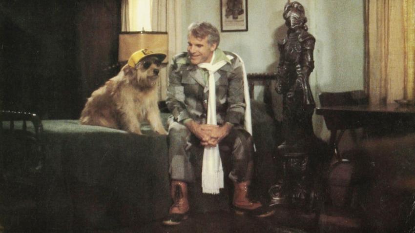 Cvok (1979)