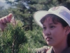 Mezinárodní dětský tábor v Songdowonu (1994)