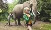 Taková nenormální rodinka / Mami, já chci slona! (2005)