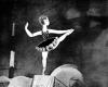 Veselý cirkus (1951)