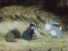 Stalo se v lese (1954)