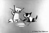 Kočičí slovo (1960)