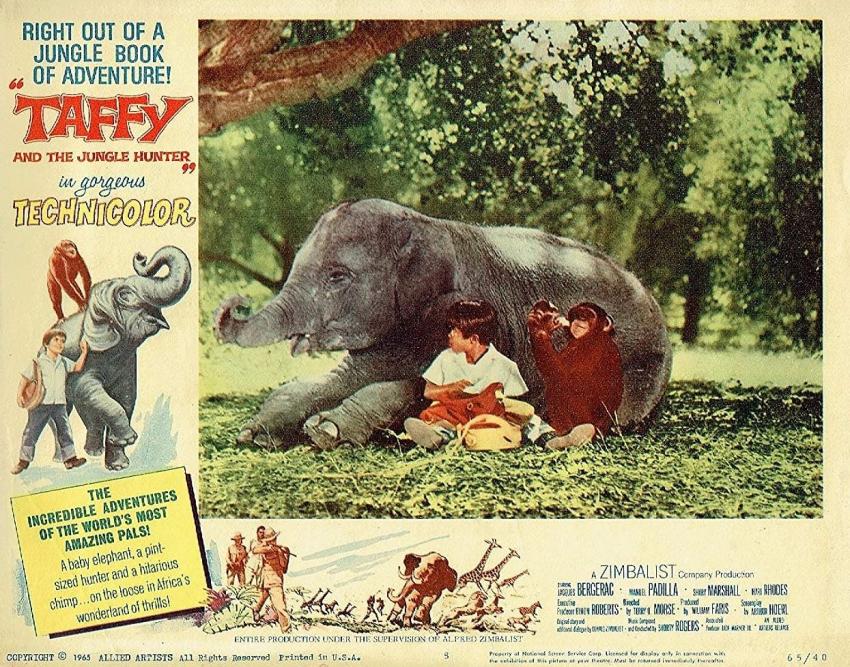 Taffy and the Jungle Hunter (1965)
