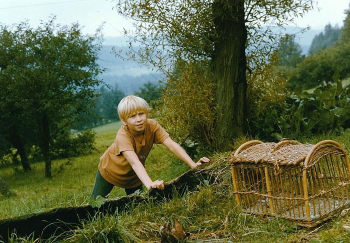 Hledám dům holubí (1985)