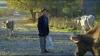 Ramin (2011) [HD CAM (HDTV)]