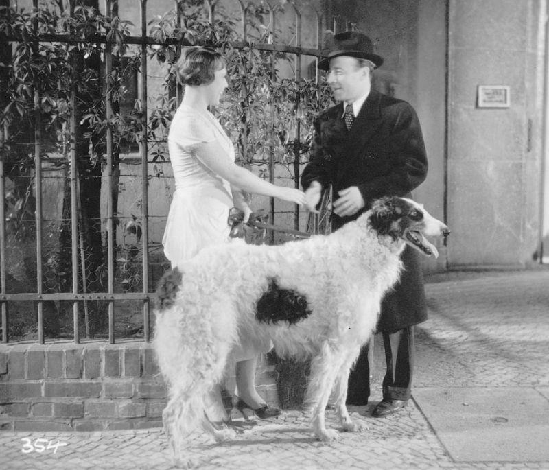 Heinz v měsíci (1934)
